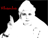 vibracobra_small.png